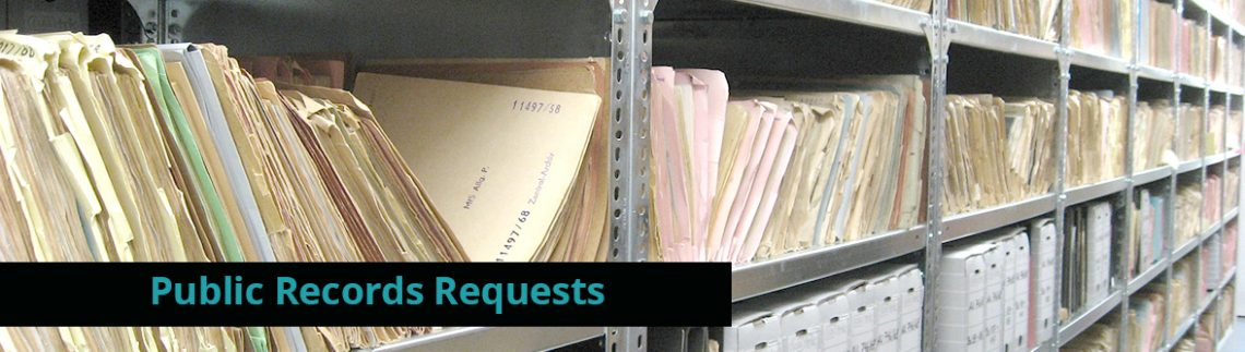 Open Government and Public Record Access